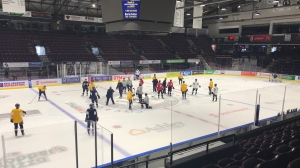 Barrie Colts hit the ice at the Barrie Molson Centre on Thurs., Sept. 19, 2019 (Krista Sharpe/CTV News)