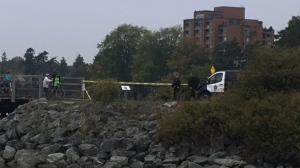 Investigators are on scene at the scene of a reported stabbing Thursday, Sept. 19, 2019. (CTV Vancouver island)