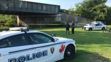 Police were called to the area under the bridge at Riverside near Crawford in Windsor, Ont., on Friday, Sept. 20, 2019. (Michelle Maluske / CTV Windsor)