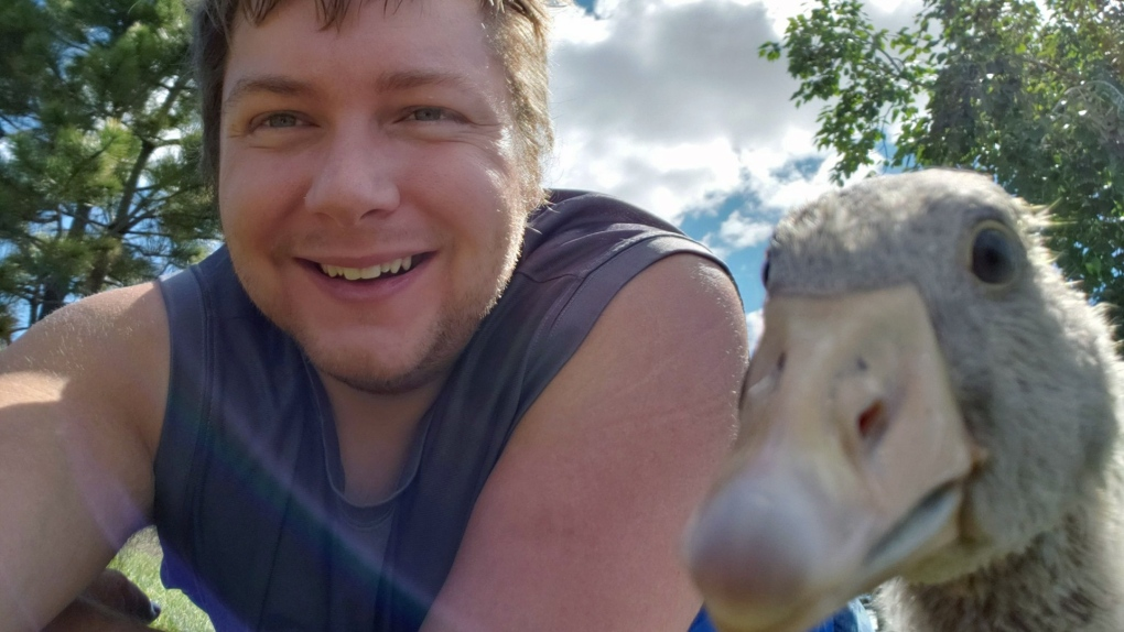 Take a gander: Leduc man befriended by goose