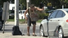 Safety concerns grow for intersection panhandlers