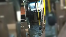Winnipeg storm causes transit bus to flood