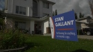 Stan Gallant, lawn sign