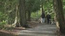 Hike The Island- Centennial Trails Loop