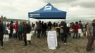 Hundreds participate in shoreline clean-up