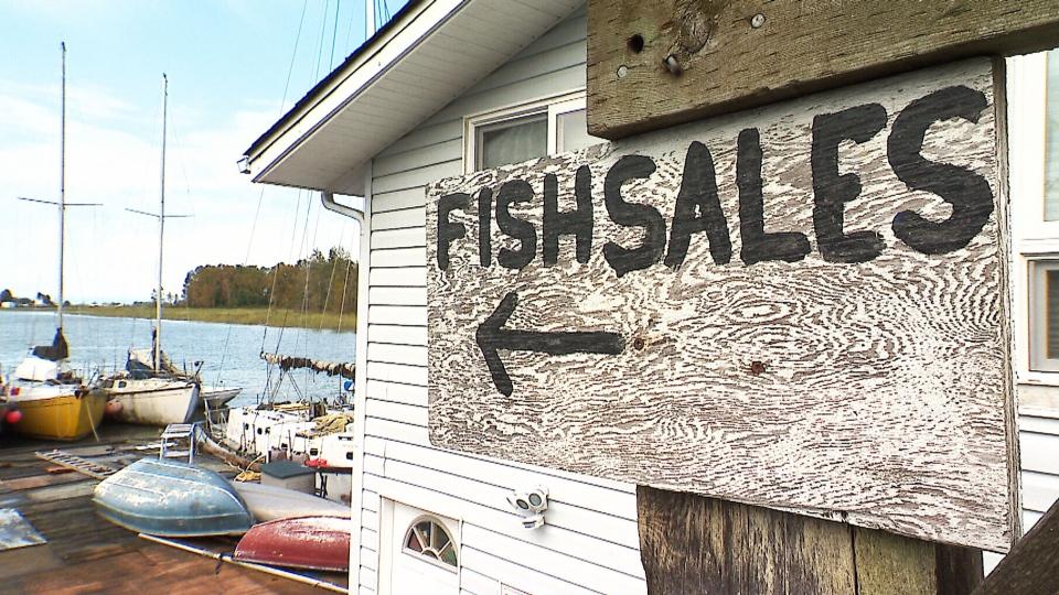 B.C. fishing industry in turmoil
