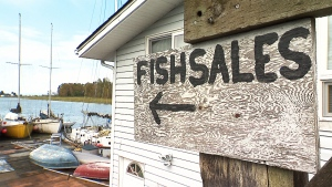 CTV National News: Worst commercial fishing season