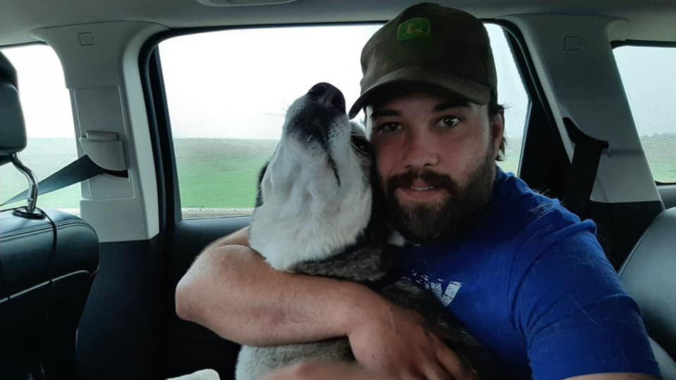 Mike Plas said he lost his dog Jack, a husky and Shepherd mix, when he broke out of his perimeter collar at his home in the northwestern Ontario city. (Photo: Mike Plas/Facebook)