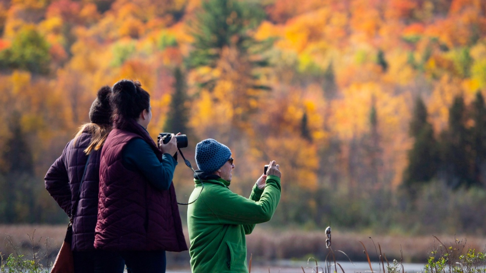 David Gillies, Teresa Finik and Christina Torsein, left, take in the fall colours in Gatineau Park in Chelsea, Que., on Sunday, Oct. 14, 2018. THE CANADIAN PRESS/Justin Tang