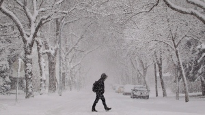 A pedestrian crosses a snow-covered street in Edmonton. Environment Canada has issued a snowfall warning for the Capital Region. THE CANADIAN PRESS/Jason Franson
