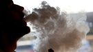 FILE - In this Friday, Jan. 18, 2019 file photo, a man exhales a puff of smoke from a vape pipe at a shop in Richmond, Va. (AP Photo/Steve Helber)
