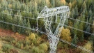 A BC Hydro tower that was damaged in northeastern B.C. earlier this year is pictured: Sept. 24, 2019 (CTV News)