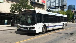 Winnipeg Transit bus.