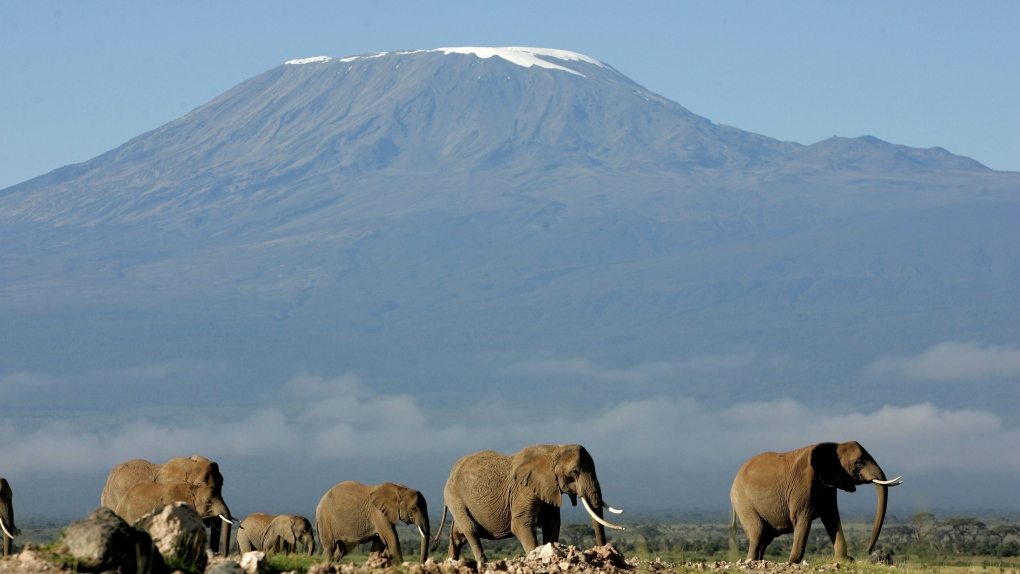 Canadian man dies in parachuting accident on Mount Kilimanjaro