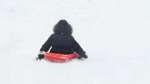 A child uses a toboggan down a hill covered in snow after a wintery storm hit Alberta. (CTV)