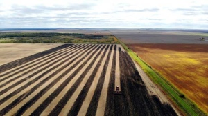 Getting our land worked up for winter in Thalberg, MB. Photo by Blair Matchizen.