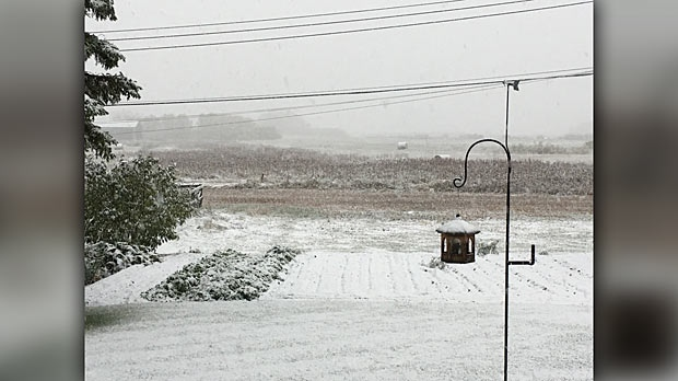 Snow fall in Rossburn, MB. Photo by Betty Budz.
