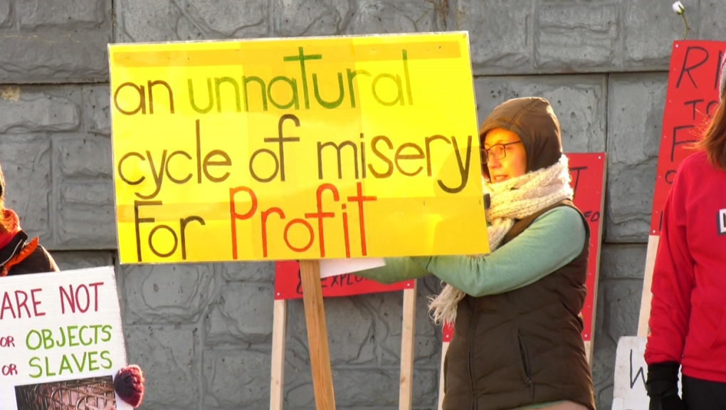 Animal rights, protest, Calgary
