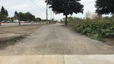 A multi-use trail nears completion on Homer Watson