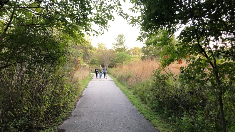 A trail on the Ojibway Prairie Provincial Nature Reserve  in Windsor, Ont., on Monday, Oct. 7, 2019. (Melanie Borrelli / CTV Windsor)