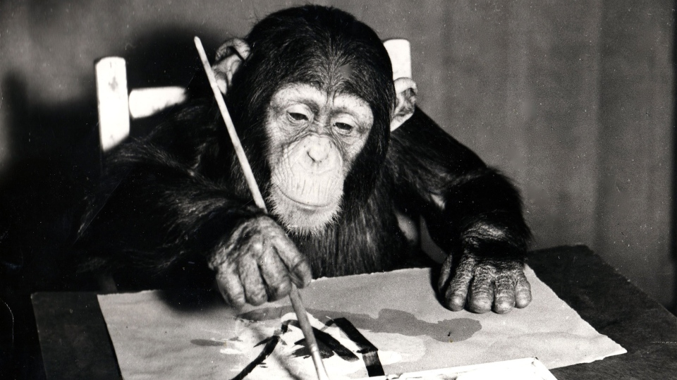 Chimp art