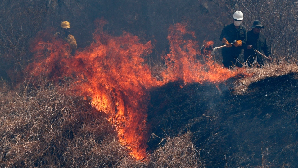 In this Aug. 30, 2019 file photo, police and firefighters work to put out a fire in the Chiquitania forest on the outskirts of Robore, Bolivia. (AP Photo/Juan Karita, File)