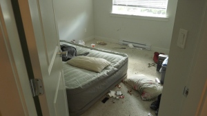 Property trashed