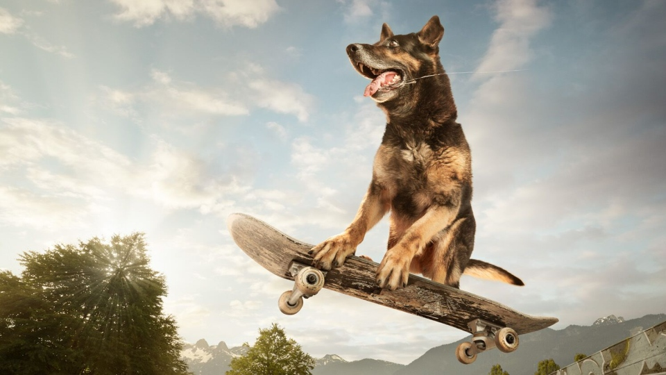 An officer from the Vancouver Police Department's Canine Unit poses on a skateboard in an image from the department's 2020 charity calendar. (Handout)