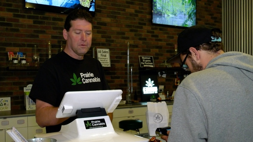 Jim Southam with Prairie Cannabis is pictured in this file photo. (Lisa Risom/CTV Saskatoon)