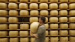 Parmigiano Reggiano Parmesan cheese wheels are stored in Noceto, near Parma, Italy, on Oct. 8, 2019. (Antonio Calanni / AP)