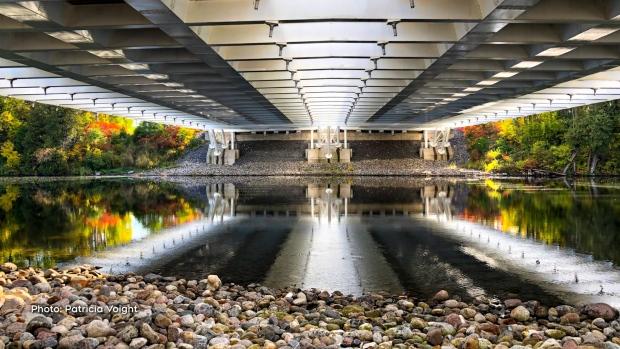Taken under the Vimy Bridge on a wonderful walk on the Chapman Mills Conservation Area trail. (Patricia Voight/CTV Viewer)