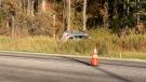 A single-vehicle crash on Essa Road in Barrie sends one woman to a trauma centre via air ambulance on Fri., Oct. 11, 2019 (Craig Momney/CTV News)
