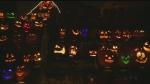 Halloween fun at Dynamic Earth