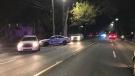 Halifax Regional Police respond to a pedestrian collision on Quinpool Road on Oct. 11, 2019. (CTV ATLANTIC / JIM KVAMMEN)