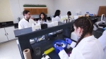 Scientists work away in the new lab at the University of Windsor, trying to find alternatives to animal testing. (CTV News)