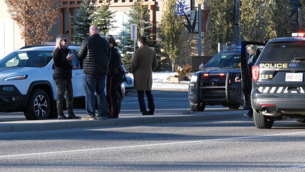 Calgary, pedestrian, vehicle, dog, southeast