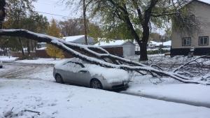 Whittier Avenue East in Winnipeg. (Photo: Robyn Boon)