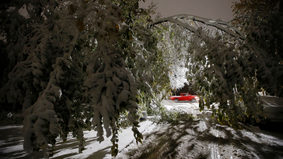 An early winter storm with heavy wet snow caused fallen trees, many on cars, and power lines in Winnipeg early Friday morning, October 11, 2019. Snow clearing crews were forced to hit the streets to clean up the damage. THE CANADIAN PRESS/John Woods