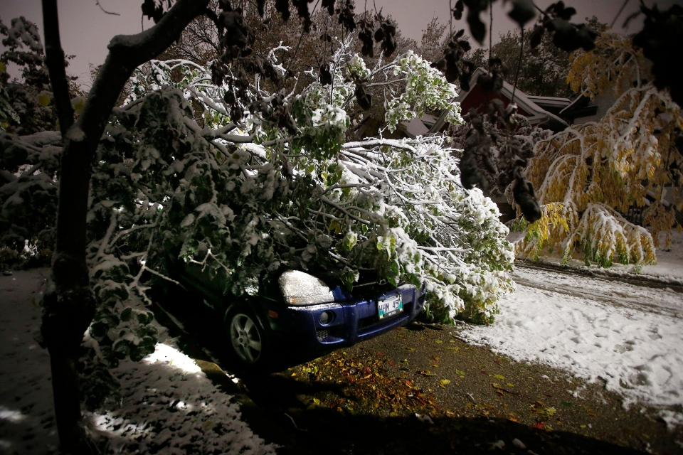 An early winter storm with heavy wet snow caused fallen trees, many on cars, and power lines in Winnipeg early Friday morning, October 11, 2019. THE CANADIAN PRESS/John Woods