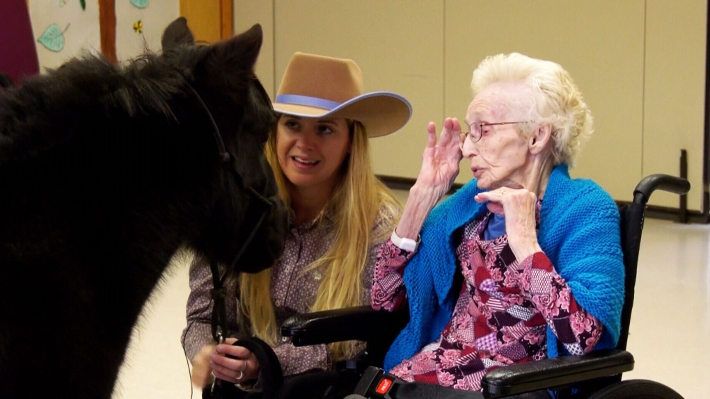 Miniature therapy horse visits seniors to spread joy