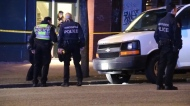 Pedestrian hit by suspected impaired driver