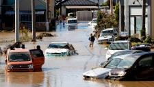 Typhoon Hagibis fallout