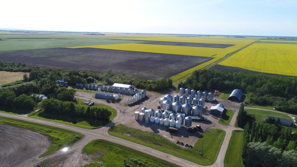 Saskatoon Farm