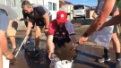 With no game to play and a mess around them in Kamaishi left by the typhoon, about 15 Canada players and staff grabbed shovels and brooms to sweep mud and debris off roads, and even from inside residents' homes. (@Rugbyworldcup/Twitter)
