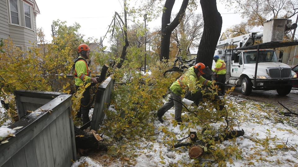 Crews cleanup after a snow storm in Winnipeg, Manitoba, on October 13, 2019. (John Woods / THE CANADIAN PRESS)