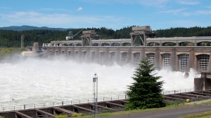 In this June 27, 2012, file photo, water flows through the Bonneville Dam near Cascade, Ore. Two prominent Pacific Northwest tribes are calling for the removal three major hydroelectric dams on the Columbia River. (AP Photo/Rick Bowmer, File)