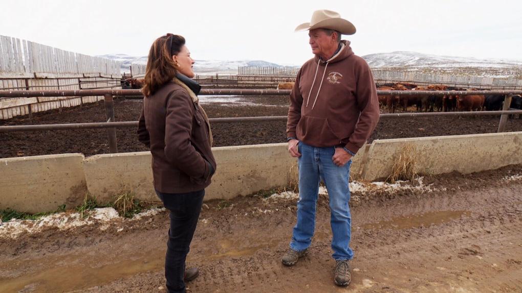 Rural Albertans express frustration over election cold shoulder