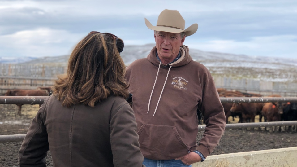 Bob Lowe, a beef producer at Bear Trap Feeders in Nanton, Alta., speaks to CTV's Chief Anchor and Senior Editor Lisa LaFlamme on Monday, Oct. 14, 2019.