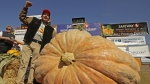 Leonardo Urena of Napa, Calif., reacts after learning his pumpkin weighed in at 2,175 lbs. in Half Moon Bay, Calif., on Oct. 14, 2019.  (Ben Margot / AP)