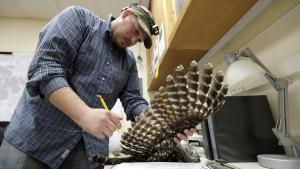 Wildlife technician Jordan Hazan records data